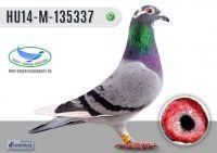 _DSC7822---HU14-M-135337-T