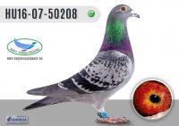 _DSC8226---HU16-07-50208-H